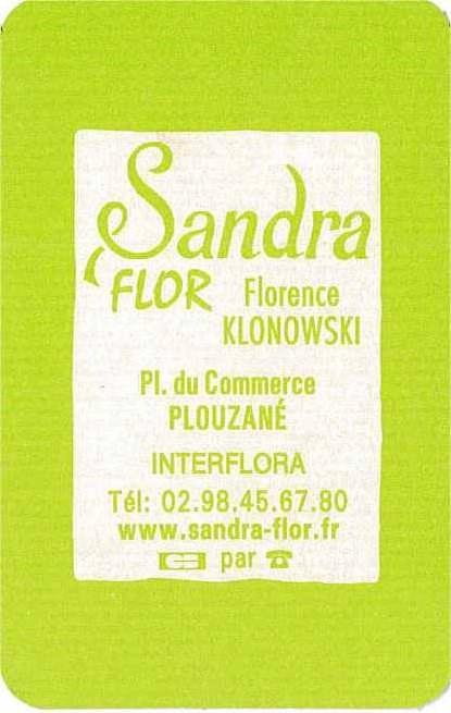 Sandra Flore